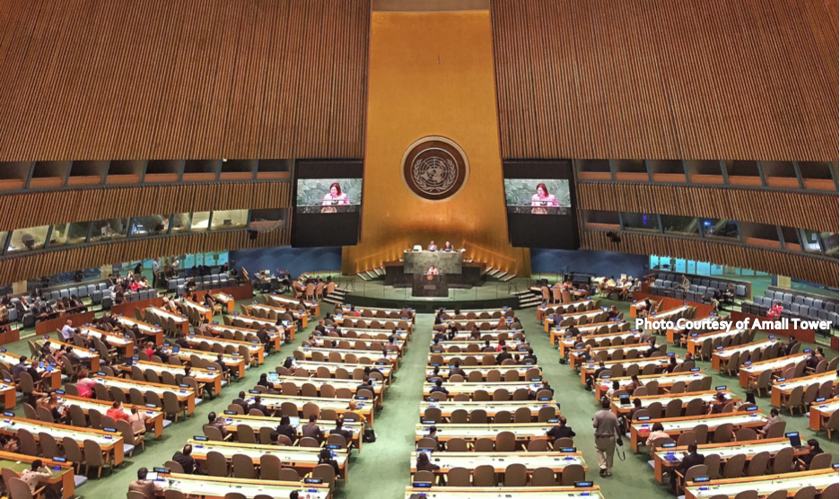 United Nations General Assembly / Photo Courtesy of Amali Tower